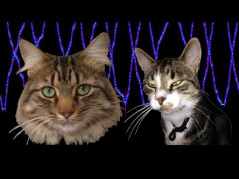 Pillow Claw - Music for Cats