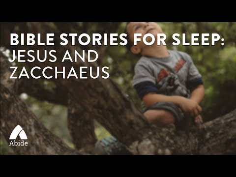 Bible Stories for Sleep: Jesus and Zacchaeus
