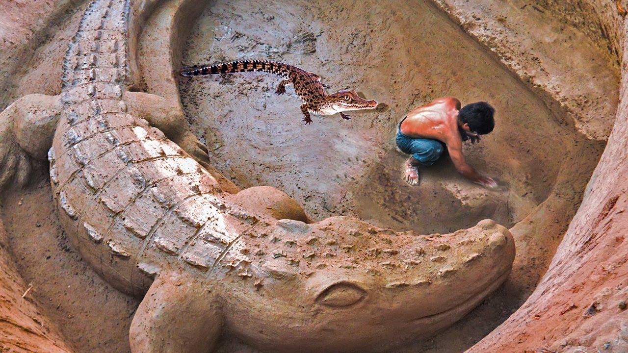 Dig Underground To Build Crocodile Pond For NewBorn Crocodile