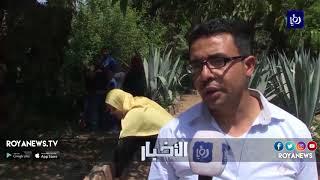 """المصريون يحيون عيد """"شم النسيم"""" منذ نحو 4700 عاماً"""
