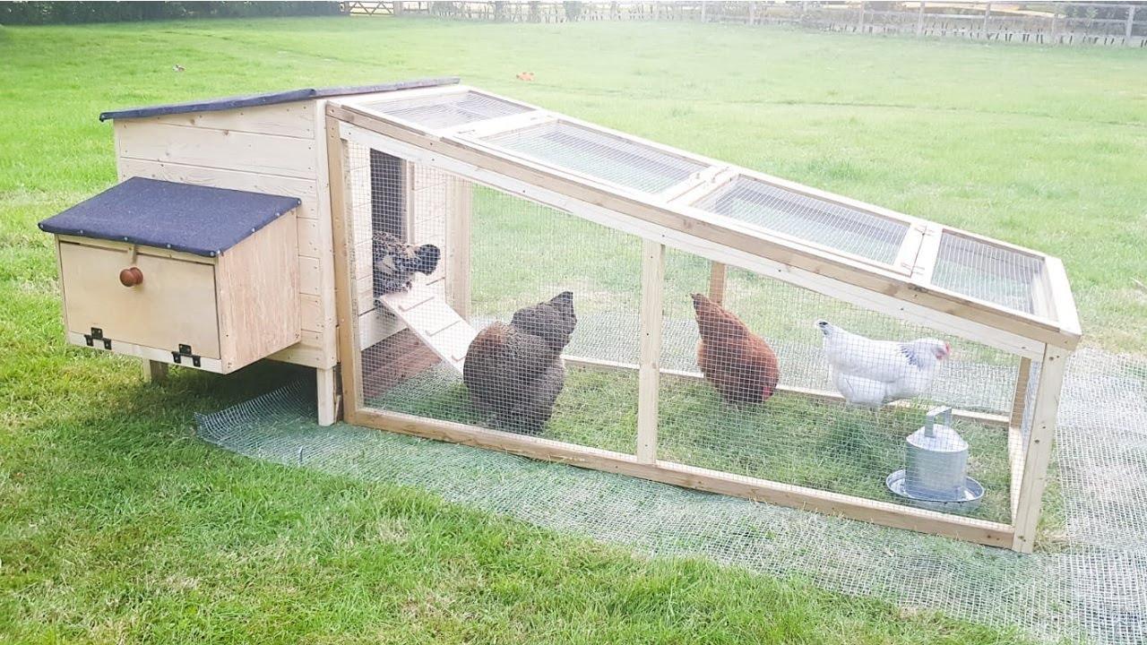 DIY Backyard Chicken Coop Build | The Carpenter's Daughter