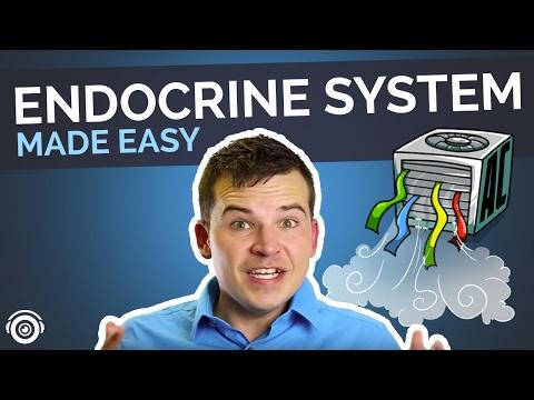 Endocrine System Made Easy | Picmonic Nursing Webinar