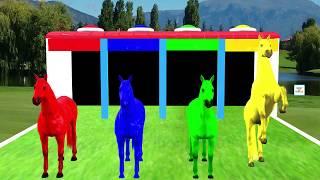 3D Pferde zum Farben lernen für Kinder