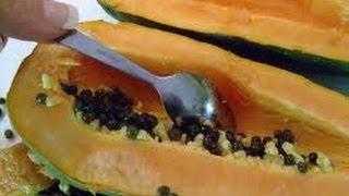 Adelgaza Muchísimo con Semilla de Papaya - Anastassia Sfeir