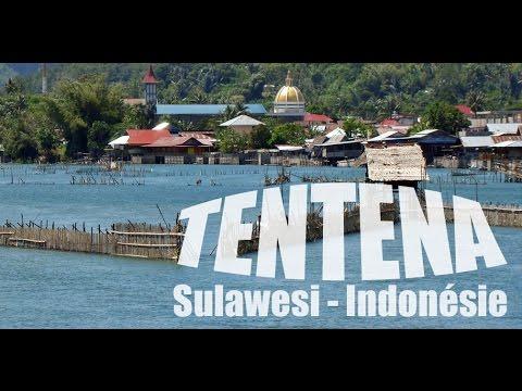 Tentena, étape Nature entre les iles Togian et le pays Toraja à Sulawesi