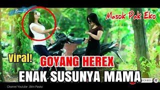 Gambar cover Viral!Goyang Herex cewek cantik Bikin Gagal FOKUS  DJ Enak susunya mama | story wa terbaru