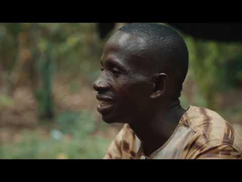 Cacao-Trace Farmer : Adjoumani