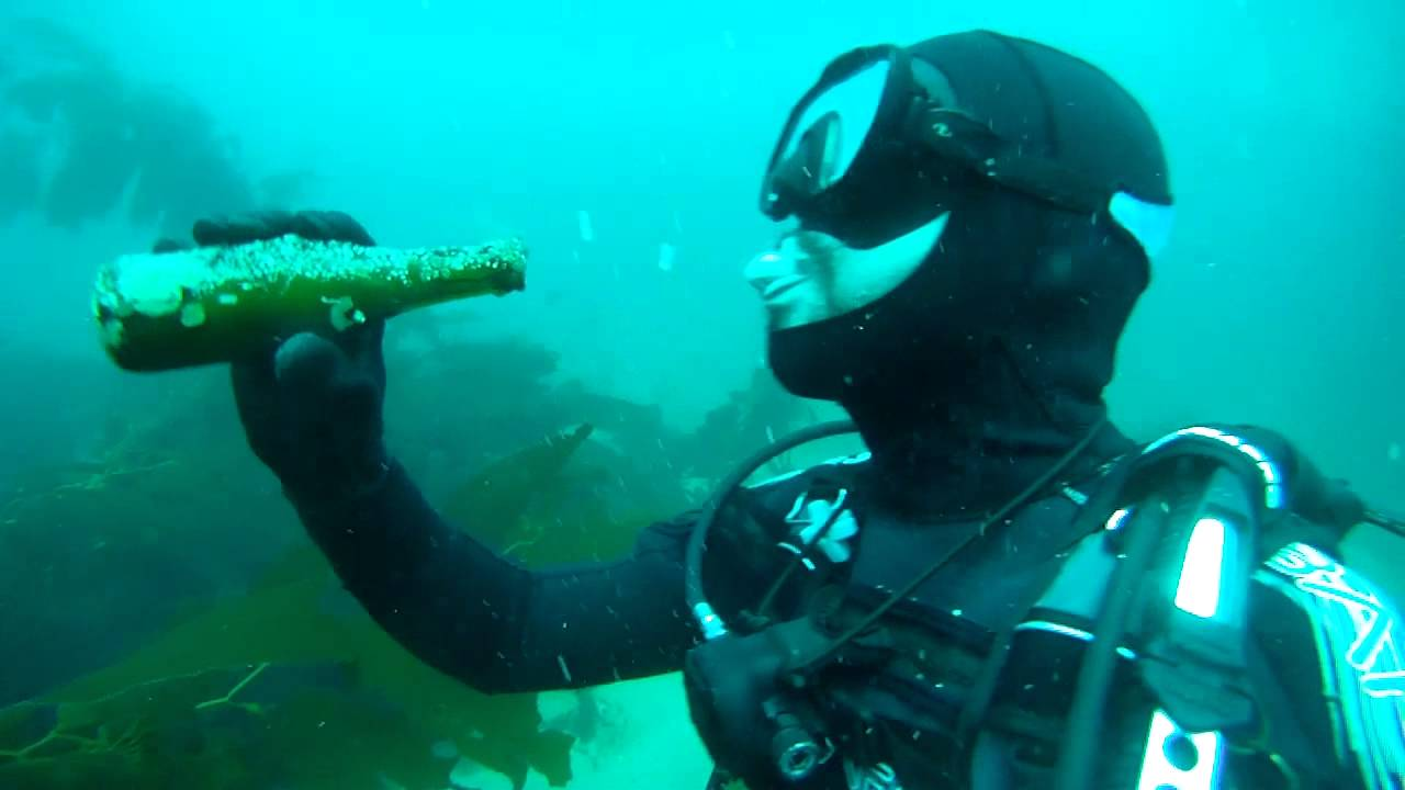 Casino point catalina scuba diving