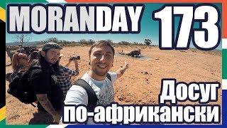 Moran Day 173 - Досуг По-Африкански (ЮАР) 🇿🇦