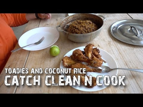 Toadies And Coconut Rice! Catch, Clean And Cook - Checkered Puffer Fish! - Florida Fishing