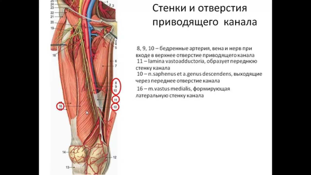 травма костей и суставы