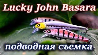 Video Воблер Lucky John Basara - подводная съемка download MP3, 3GP, MP4, WEBM, AVI, FLV Juni 2018