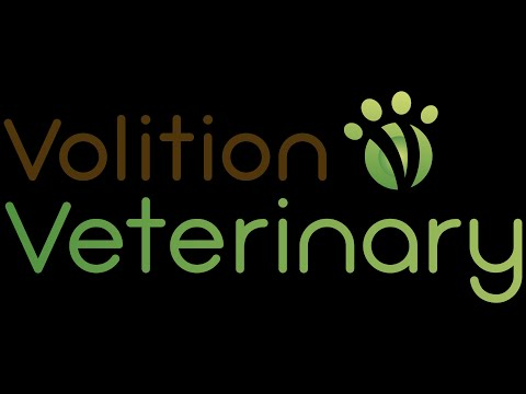 Volition Forms Texas-Based Veterinary Subsidiary and Appoints its