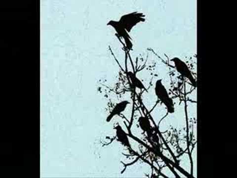 Yma Sumac antología - Birds