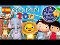 La canción del zoo | Y muchas más canciones infantiles | ¡60 minutos de recopilación LittleBabyBum!