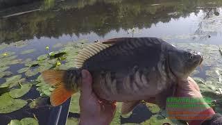 Рыбалка с Щербаки