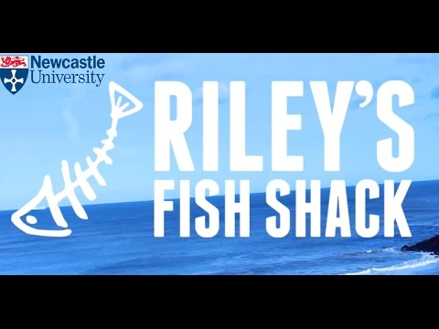 NUBS Project - Riley's Fish Shack