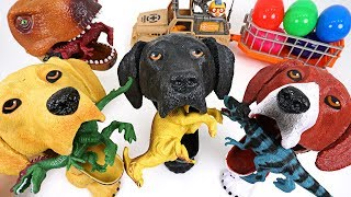Dinosaurs are trying to take surprise egg! Crazy hungry dog and dinosaur summon! - DuDuPopTOY