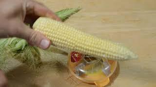 Corn Peeler Kitchen Tool Gadget Review
