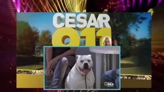 Cesar 911 Season 2 Episode 1