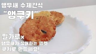 앵무새 수제 간식/쿠키 만들기/10분이면 만드는 초보자…