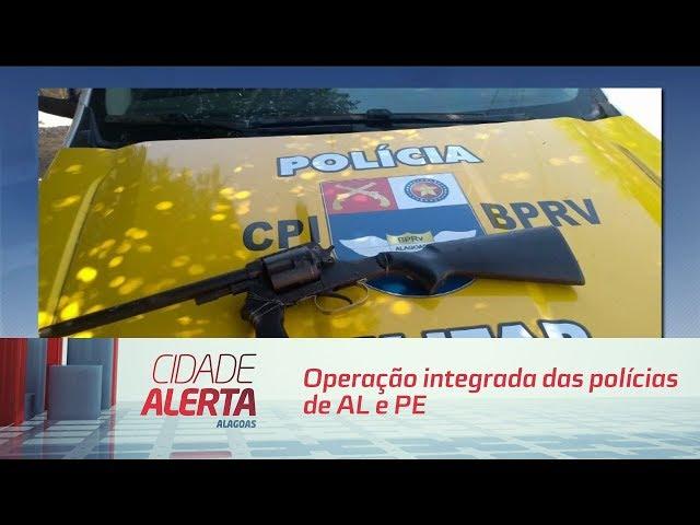 Operação integrada das polícias de AL e PE encontra plantação de maconha