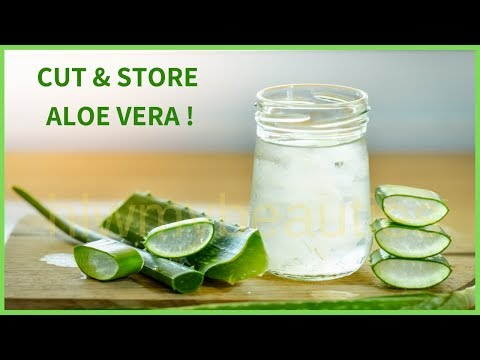 How to store aloe vera leaf | make aloe vera gel at home