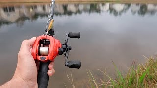 Bank Fishing An Urban Pond (LOADED w/ HUGE BASS)
