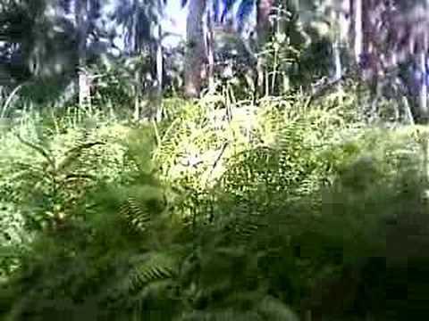 kharem trip to bangon 4