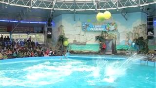 Благодійний день народження Київський дельфінарій НЕМО(Сюжет про святкування Дня народження Київського дельфінарію