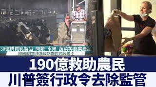 川普簽行政令去除監管 190億救助農民|新唐人亞太電視|20200521