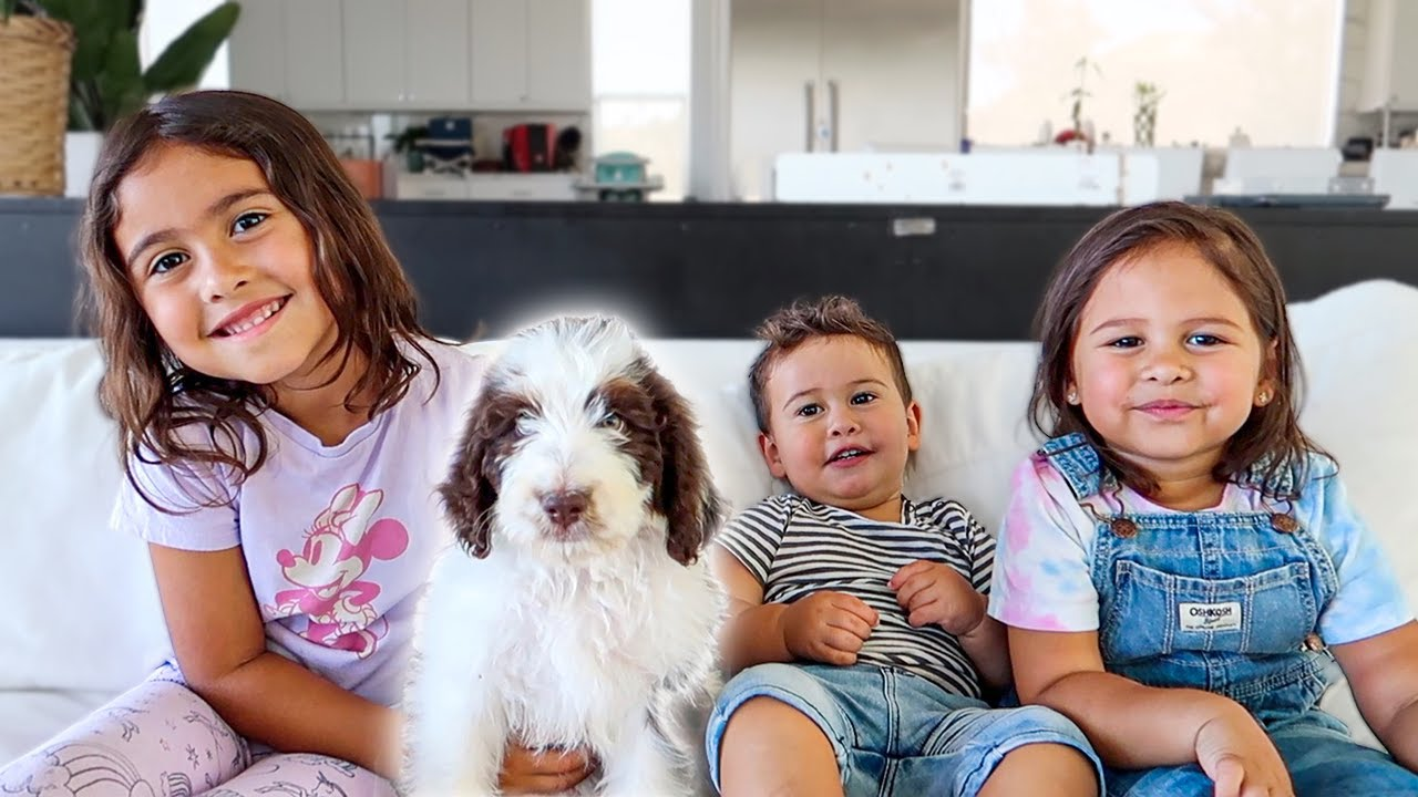 PlayTube Vlogs: WELCOME TO THE FIRST ACE FAMILY DOG!!!