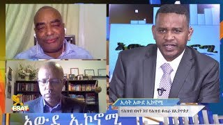 ESAT Awde Economy Ermias with Dr. Shiferaw and Dr.Tadesse on Population Economics Part 1 Jan 2019