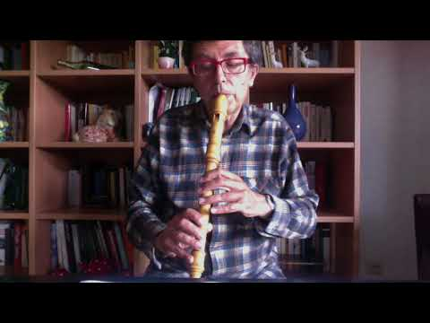 D.  Scarlatti,  Sonata K 11, set for treble recorder