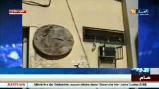 خدمات: وضعية كارثية تعيشها بعض وكالات الخطوط الجوية الجزائرية
