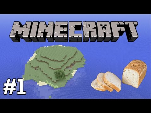 Minecraft: Survival Island! (Part 1)
