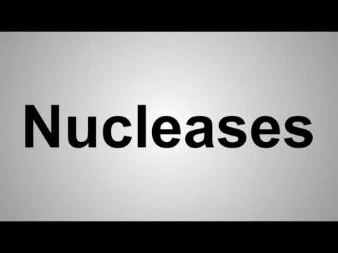 How To Pronounce Nucleases