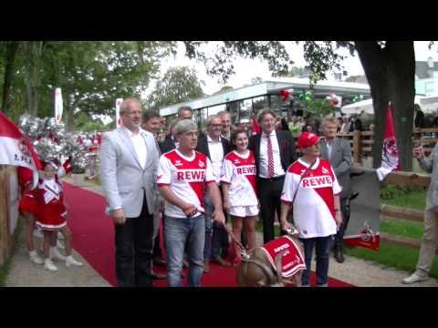 FC Hennes der VIII zieht um in den Kölner Zoo