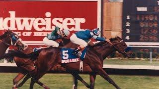 1985 Jersey Derby