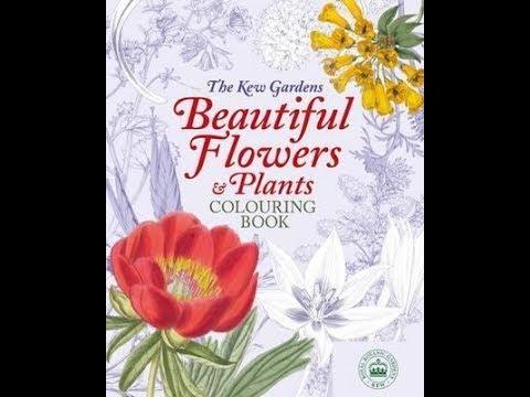 the-kew-gardens-beautiful-flowers-&-plants-colouring-book---flip-through