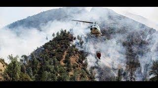 USA: Yosemite-Nationalpark durch Waldbrände bedroht