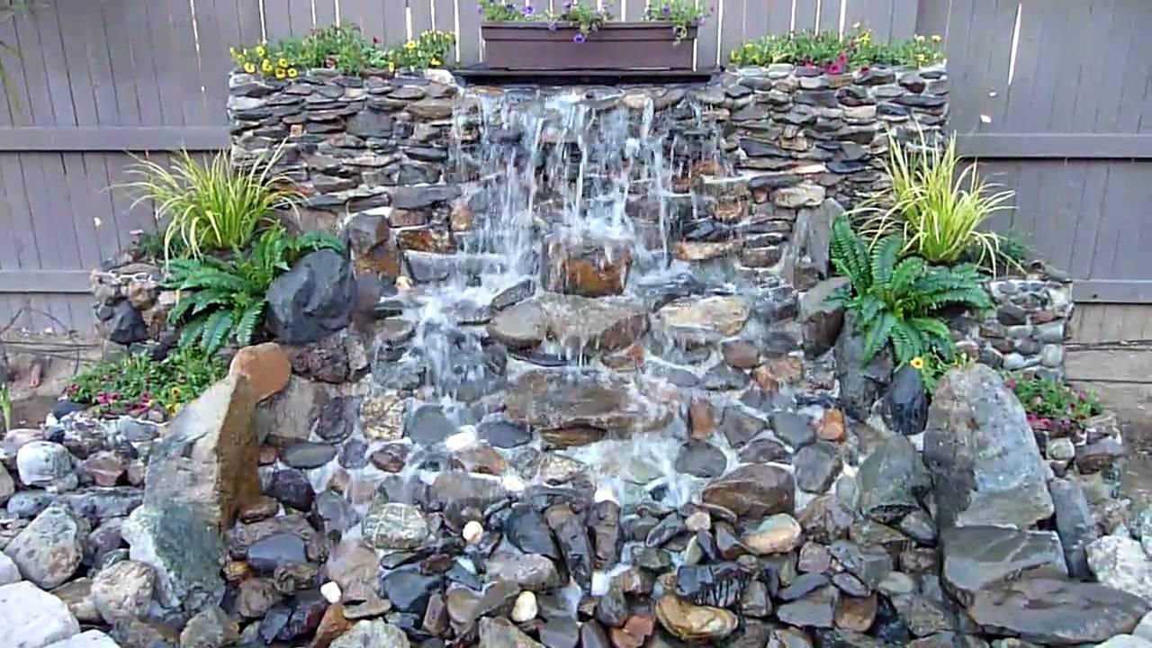 Water Plants Ponds Sale