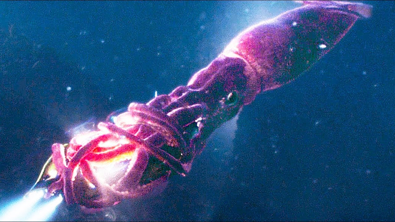 The Meg (2018) - Giant Squid Attack Scene! - Movieclip HD ...