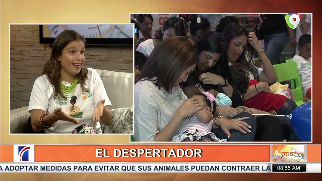 Dra. Paula Rodríguez, El sistema no fomenta la lactancia en RD | El Despertador SIN