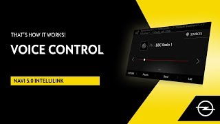 Navi 5.0 IntelliLink | Voice Control | That's How It Works!