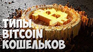 типы и виды кошельков Биткоин. Как выбрать Bitcoin кошелек