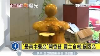 「最萌木藝品」開香菇 買主自嘲:絕版品|三立新聞台