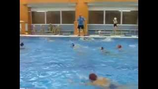 Тренировка по водному поло. Водно-спортивный клуб Дельфин