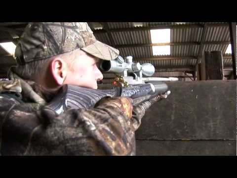 Airgun Hunting - Shooting Feral Pigeons With A Daystate Air Ranger