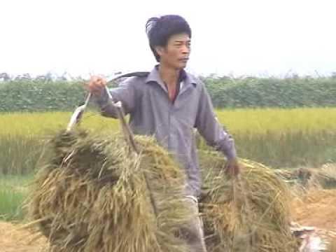 Thuong Le Que Huong Toi 2007